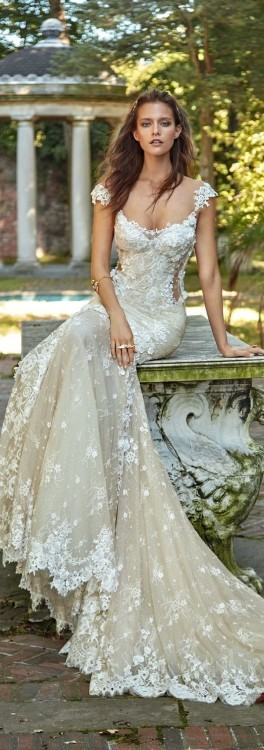 D2399+ Pearl Beaded Vintage Plus Size Wedding Gown by Essense of  Australia