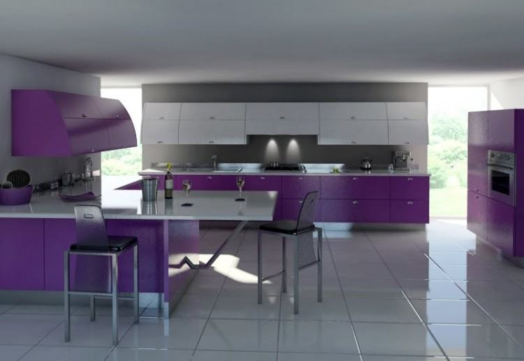 view in gallery purple kitchen ideas decorating