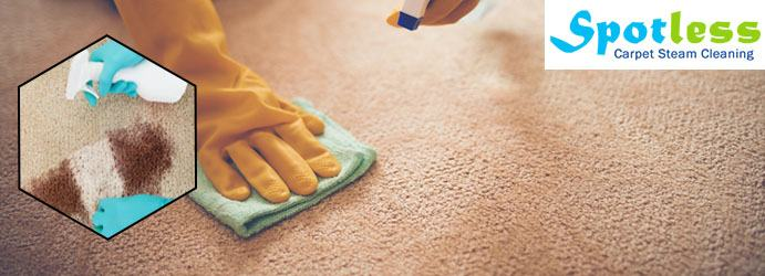 Oriental rugs require the highest level of knowledge to clean properly