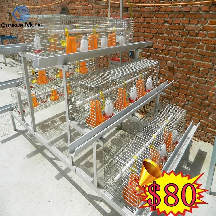 China China supplier modern chicken shed design low cost poultry farm  house design