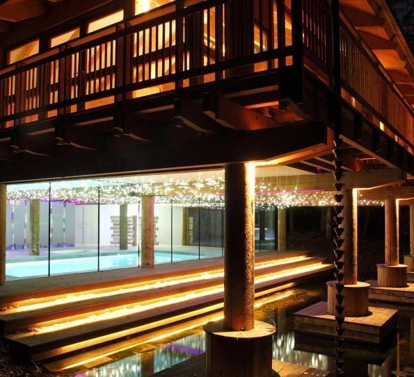Lighting business for luxury backyard swimming pool