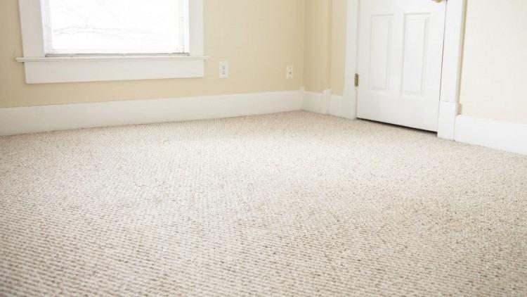 type of carpet carpet type level loop cut pile