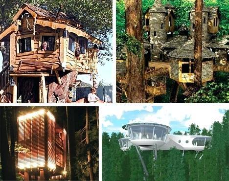 ark house ideas tree house designs ark greenhouse ideas