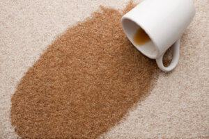 Full Size of 3 Types Of Carpet Stains Different Padding Double Choosing  Wells As Care Tips