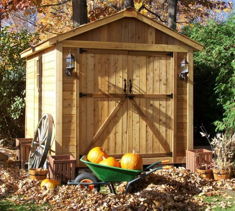 backyard shed living space