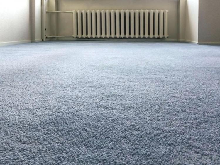 Berber is a popular example of loop pile carpet