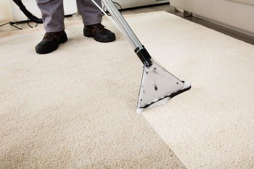 If  you are looking to hire professional carpet cleaners, you want to be 100  percent