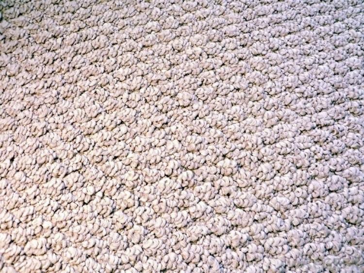 type of carpet