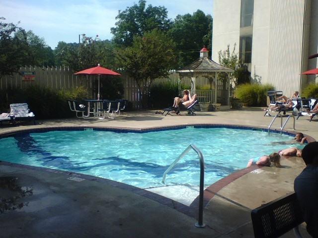 Unusual Swimming Pool Designs