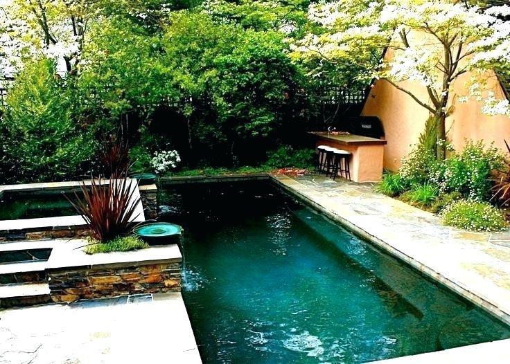 home swimming energized single lane swimming pool lap pool designs lap pool  cost home swimming single