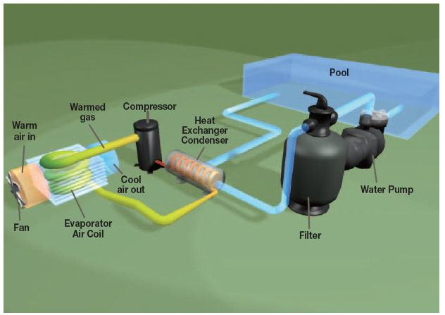 Pool Filtration System How The Natural Swimming Pool Filtration System  Works Chemical Free Maintenance Free Other Than Weeding I Guess Swimming  Pool Pump